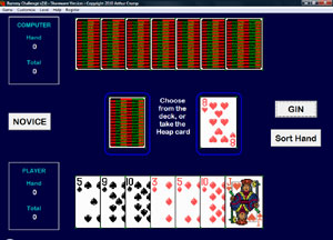 Rummy Challenge - Play a non-traditional card game of rummy.